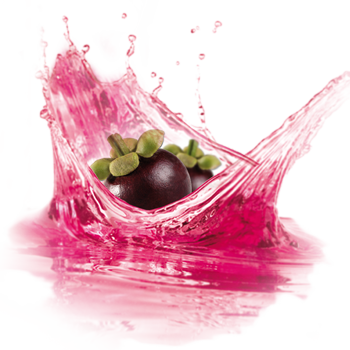 Mangosteen Powdered Water Enhancer